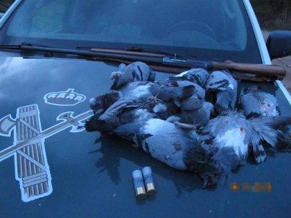 Denunciado por abatir palomas con una escopeta en Larraga