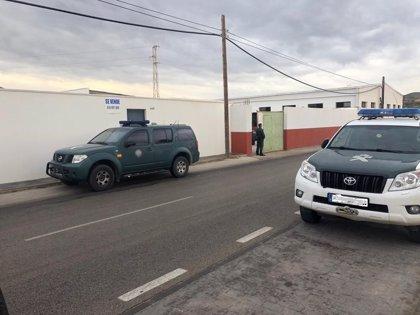Trece detenidos y varias toneladas de droga requisadas en una operación en Málaga y Cádiz