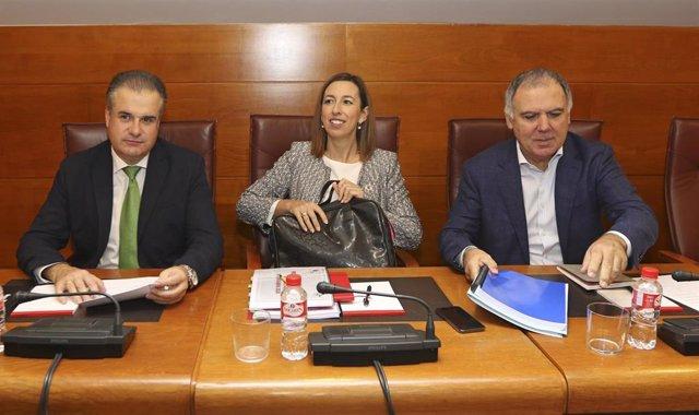 La consejera de Economía y Hacienda del Gobierno de Cantabria, María Sánchez; con el regionalista Francisco Ortiz (izda) y Lorenzo Vidal de la Peña, del PP, a la derecha