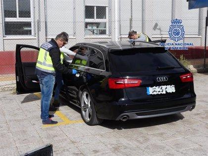 Detenidas cinco personas que controlaban un cultivo 'indoor' de marihuana en Molina