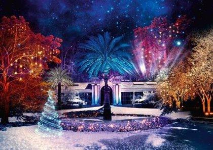 Luces de Navidad: un plan perfecto para empaparnos de espíritu mágico de estas fechas