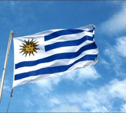 Uruguay.- Incautadas tres toneladas de cocaína ocultas en un contenedor en Uruguay