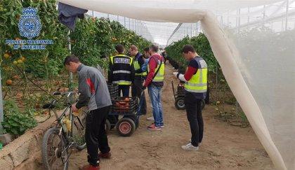 Destapan en Níjar (Almería) una trama empresarial que contrababa trabajadores irregulares bajo otras identidades