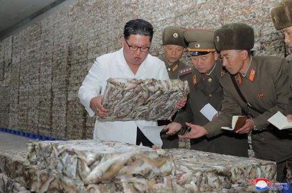 Corea.- Kim Jong Un rechaza una invitación para asistir a la cumbre de líderes del sudeste asiático en Corea del Sur
