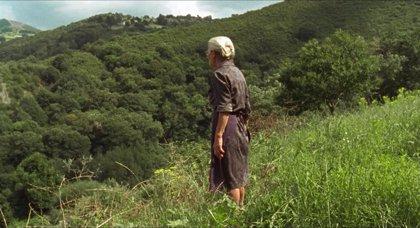 'Dolor y gloria', 'La trinchera infinita', 'Mientras dure la guerra' y 'O que arde', finalistas a los Premios Forqué