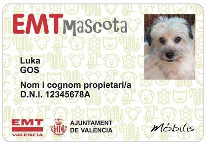 Las mascotas suben al bus con su carné de EMT València