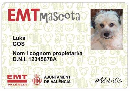 Les mascotes pugen al bus amb el seu carnet d'EMT València