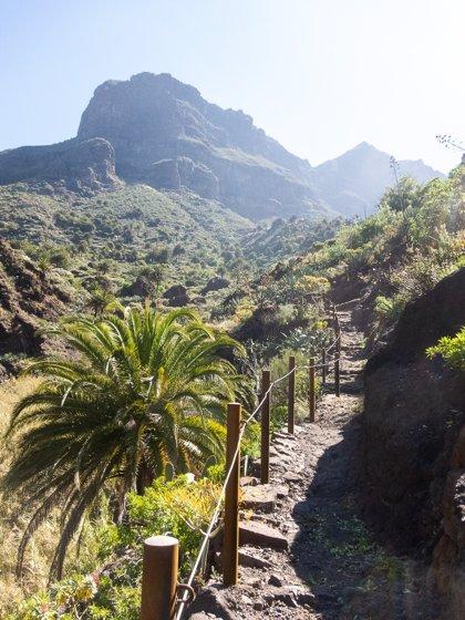 El Cabildo de Tenerife mantiene la previsión de reabrir el barranco de Masca antes del verano