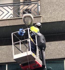 Operario cambia la luz de una farola en la calle San Antón