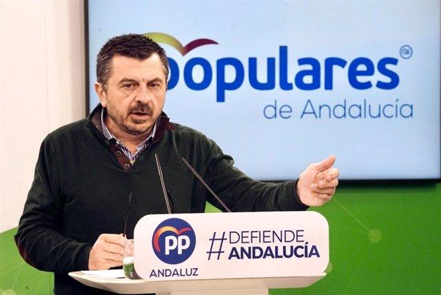 El vicesecretario general del PP-A, Toni Martín, este domingo