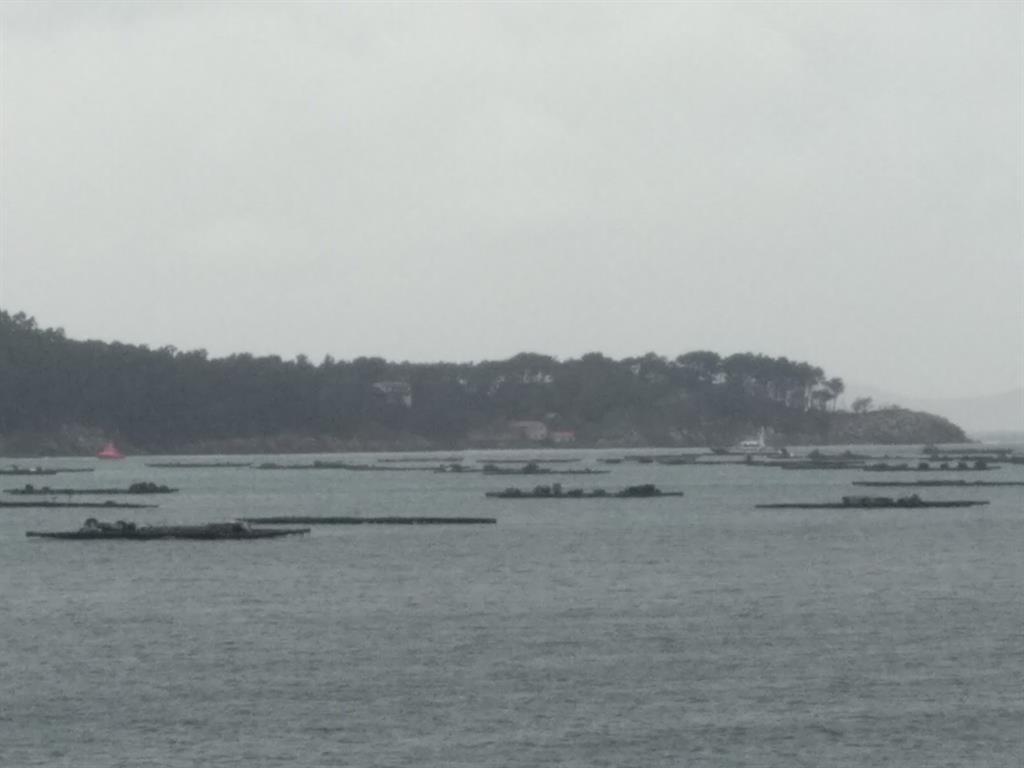 Detenidas dos personas en un submarino que transportaba droga en la ría de Aldán (Pontevedra)