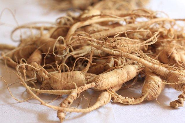 Una hierba medicinal tradicional china puede ofrecer una nueva estrategia contra