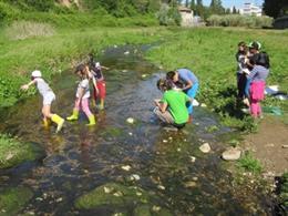 Projecte educatiu ambiental a Catalunya