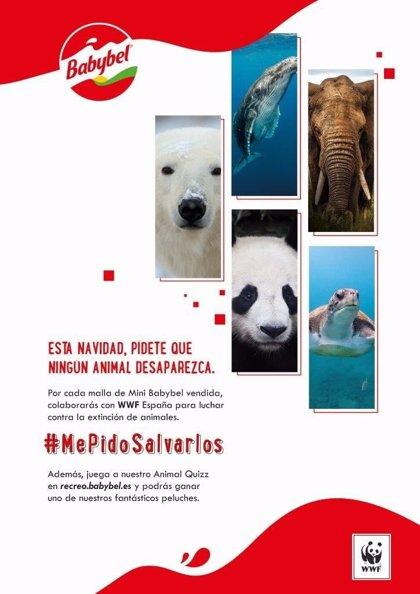 Babybel y WWF España se unen en Navidad para luchar contra la extinción de los animales
