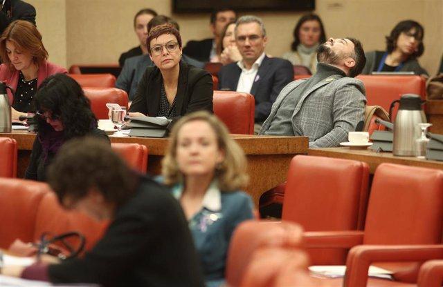Los diputados de ERC, Montserrat Bassa y Gafriel Rufián, durante la reunión de la Diputación Permanente del Congreso