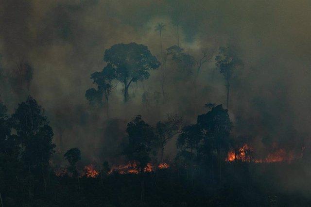 Incendios en la Amazonas de Brasil, cerca de Caneiras do Jamari en Rondonia (imagen de archivo)