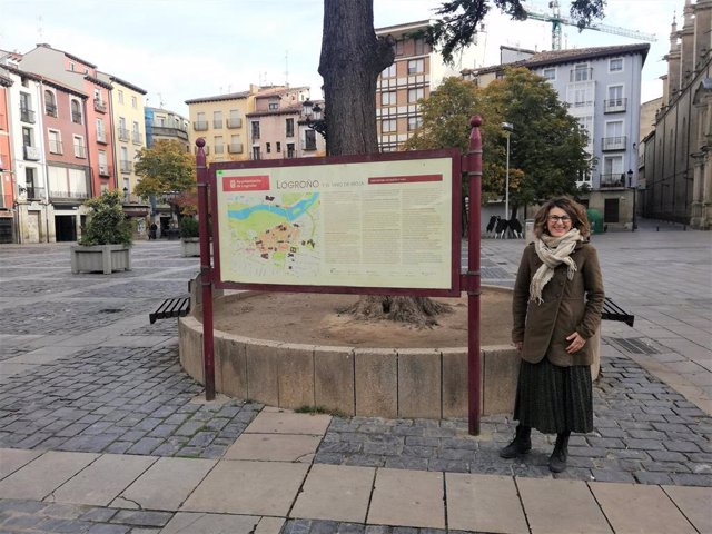 La concejal de Ciudadanos Rocío Fernández ha presentado la moción para convocar un concurso de ideas para reformar la Plaza del Mercado.