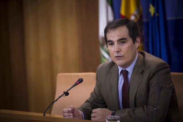 El portavoz parlamentario del PP-A , José Antonio Nieto