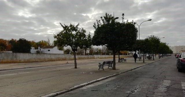 Avenida La Zarcilla en La Palma del Condado (Huelva).