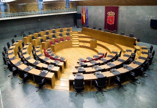 Pleno.- El Parlamento foral aprueba 50.000 euros para UAGN y otros 30.000 para E