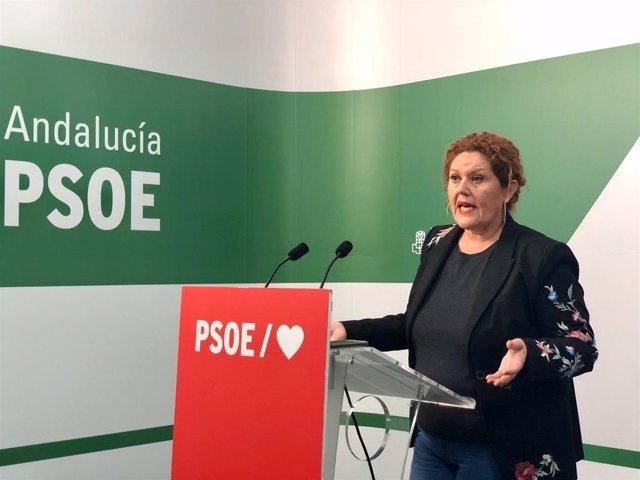 La secretaria de Organización del PSOE de Cádiz, Araceli Maese, en rueda de prensa.