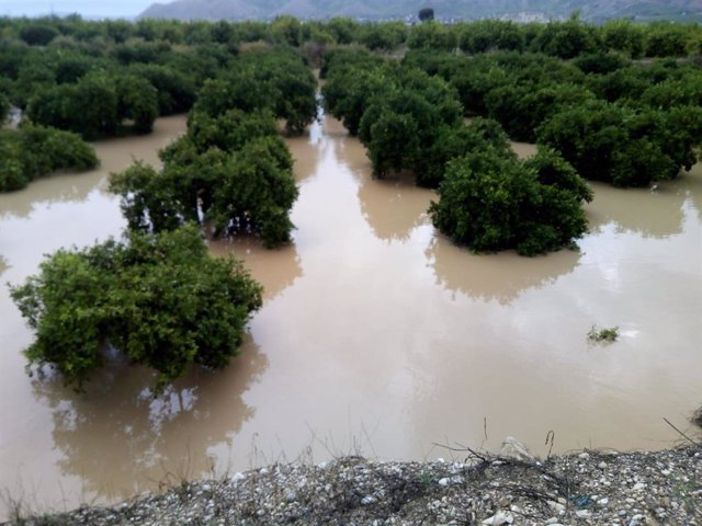 Efectos de la DANA en la Vega Baja