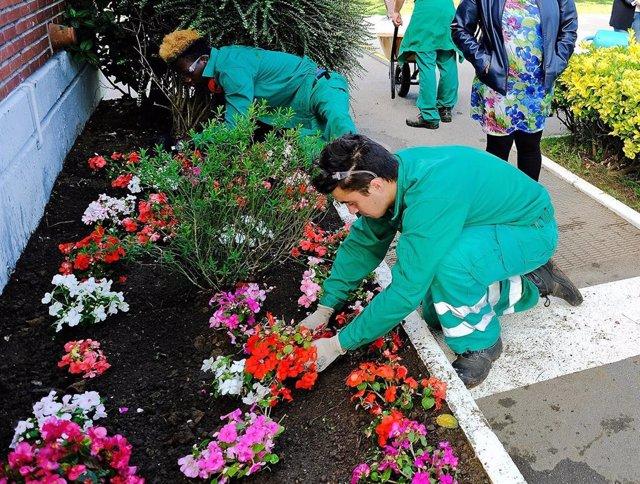Alumnos de Formación Profesional de Jardinería en Santander.