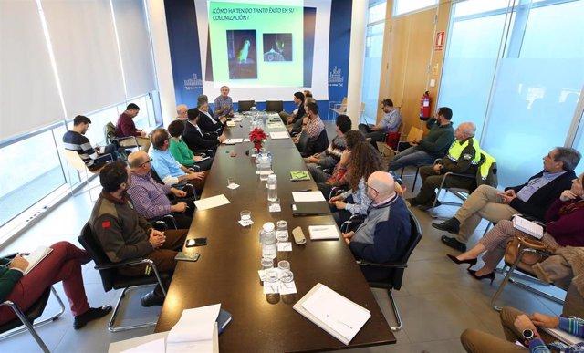 Reunión para coordinar una actuación conjunta de los municipios para solventar el problema de las cotorras argentinas