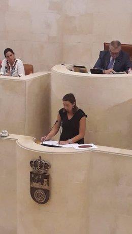 La consejera de Economía de Cantabria, María Sánchez, interviene en el Pleno del Parlamento