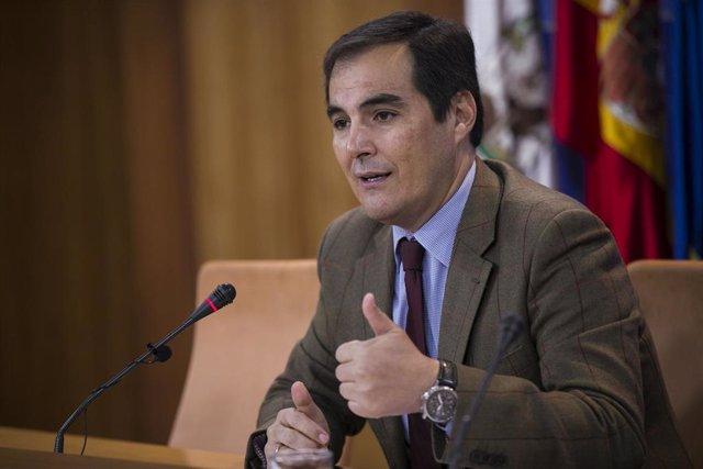 El portavoz parlamentario del PP-A , José Antonio Nieto.