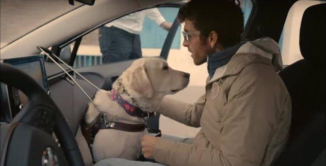 Una persona ciega, con discapacidad visual, usa viaja como copiloto en un coche de Cabify.