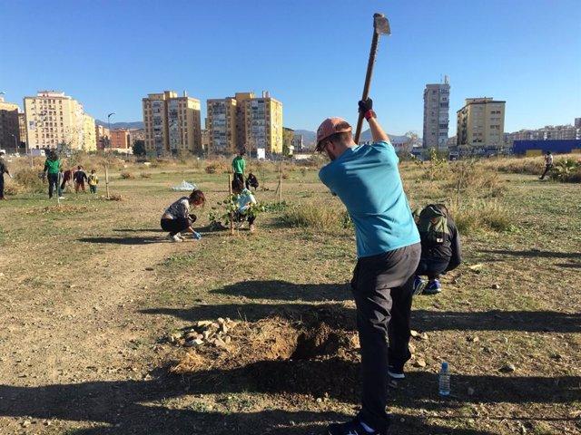 Un voluntario planta árboles en los antiguos terrenos de Repsol.