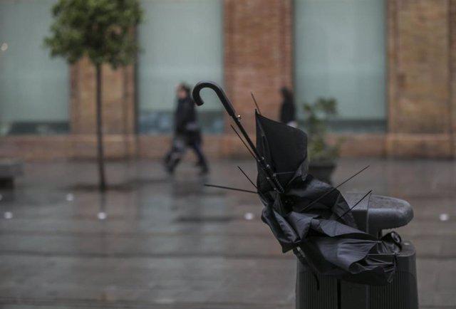 Paragüas roto en una papelera. En Sevilla, (Andalucía), a 22 de noviembre de 2019.