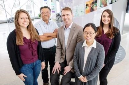 Decenas de posibles nuevos antibióticos descubiertos mediante una aplicación gratuita en línea