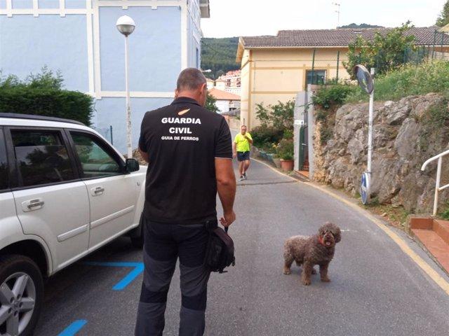 La Guardia Civil en el registro de la vivienda de la detenida en Castro Urdiales con el perro Marley. Archivo.