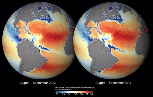 Salinidad en los océanos