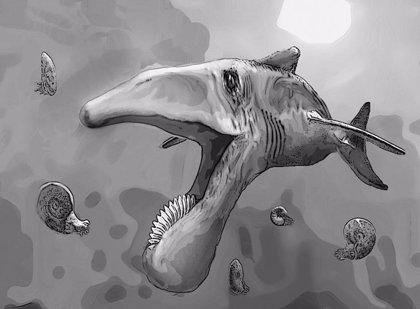 Fósil de pez gigante con grandes dientes de sierra aparece en Rusia