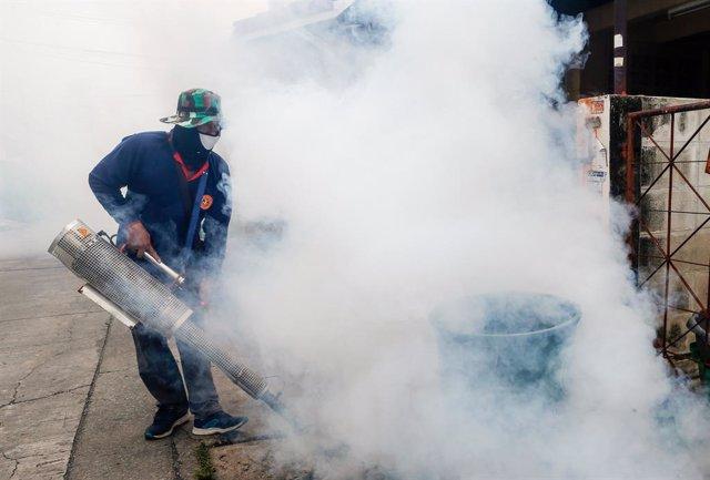 Filipinas.- Unas 1.500 personas han muerto este año por dengue en Filipinas
