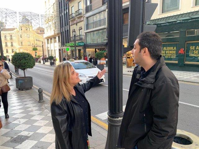 Concejales del PSOE de Granada examinan un semáforo repintado de negro
