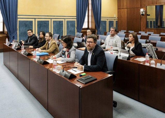 Comisión de investigación de la Fundación Andaluza Fondo de Formación y Empleo.