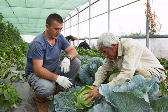 Agro.- La Caixa destina casi un millón de euros a programas de pobreza en el medio rural