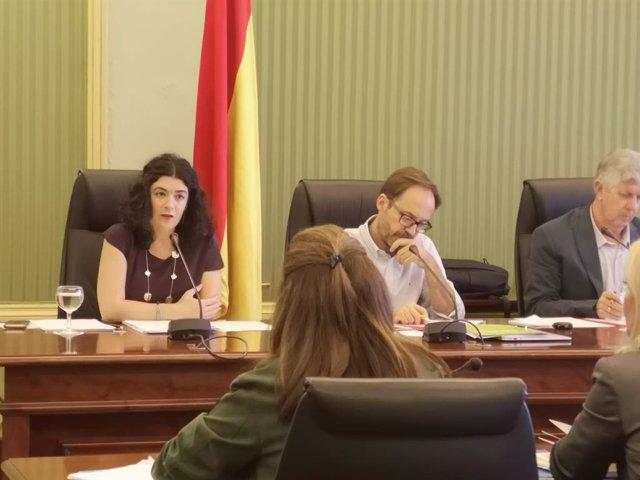 La consellera d'Administracions Públiques i Modernització, Isabel Castro, en una compareixença.
