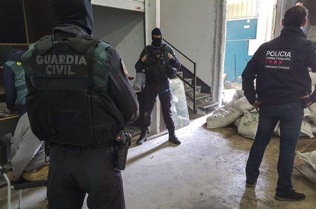 Agents de Mossos d'Esquadra i Guàrdia Civil en un operatiu conjunt contra el tràfic de droga.