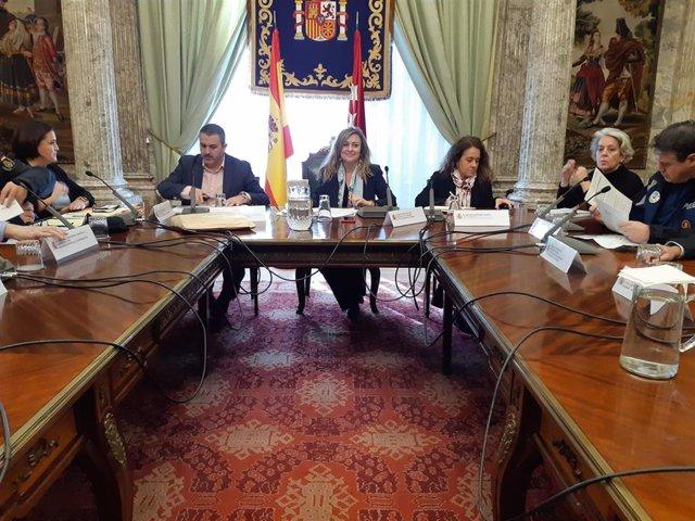 La delegada del Gobierno en la Comunidad de Madrid, María Paz García-Vera, ha presidido hoy la primera reunión de coordinación del dispositivo de seguridad que se prevé para este periodo navideño.