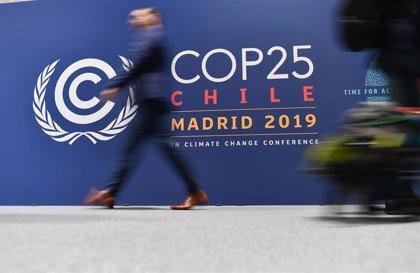 """Cáritas reclama """"unión"""" entre gobiernos y organizaciones para una lucha """"decidida"""" contra el cambio climático"""