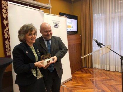"""CERMI premia al Real Patronato sobre Discapacidad por su """"valiosa""""contribución de inclusión de personas con discapacidad"""