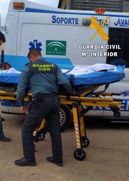 Agentes de la Guardia Civil atiende al cochero de un carruaje herido en decorados de cine de Tabernas (Almería)