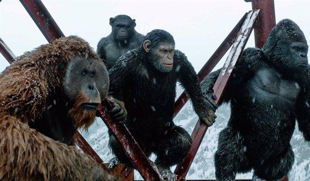 Imagen de El amanecer del planeta de los simios
