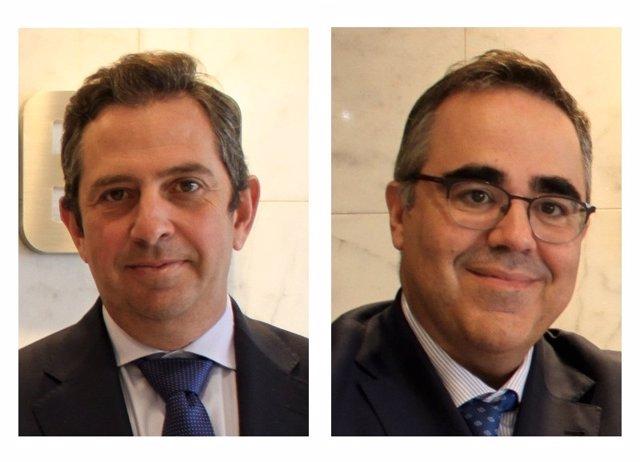 Iñigo Fernández de Mesa y Gregorio Izquierdo, del IEE.