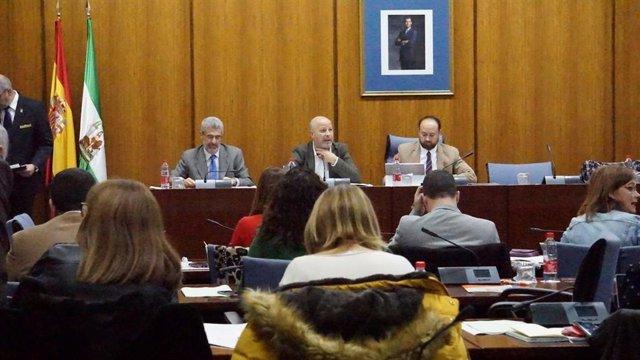 Javier Imbroda en la Comisión de Educación